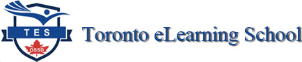 Toronto eLearning School